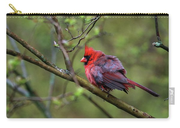 Fluffing Up My Feathers Carry-all Pouch