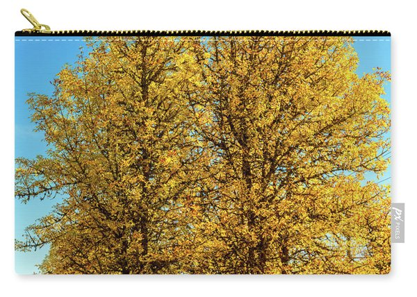Carry-all Pouch featuring the photograph Foliage by Dheeraj Mutha