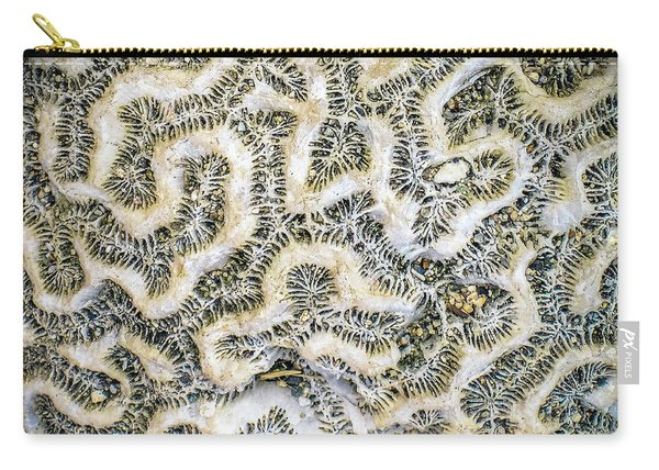 Fossilized Brain Coral Carry-all Pouch