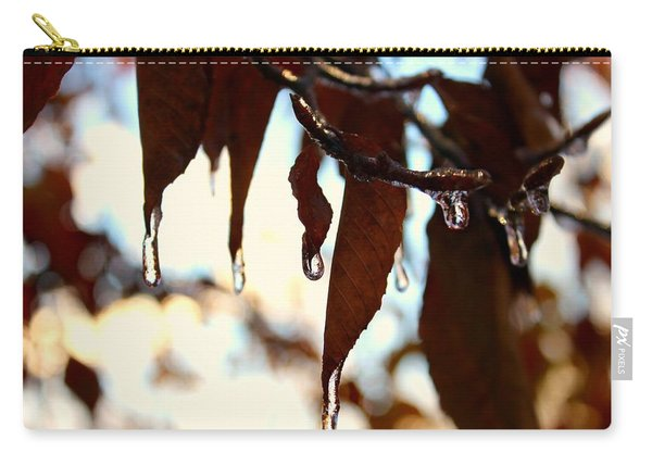 Carry-all Pouch featuring the photograph Frozen Autumn  by Candice Trimble