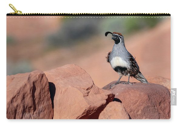 Gambels Quail One Carry-all Pouch