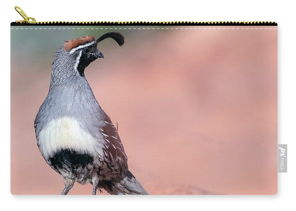 Gambels Quail Three Carry-all Pouch