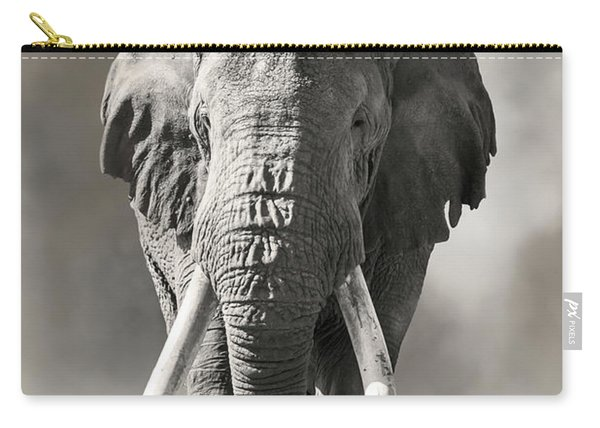 Giant Tusked Bull Elephant In Amboseli, Kenya Carry-all Pouch