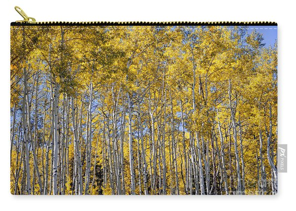 Golden Aspen Grove Carry-all Pouch