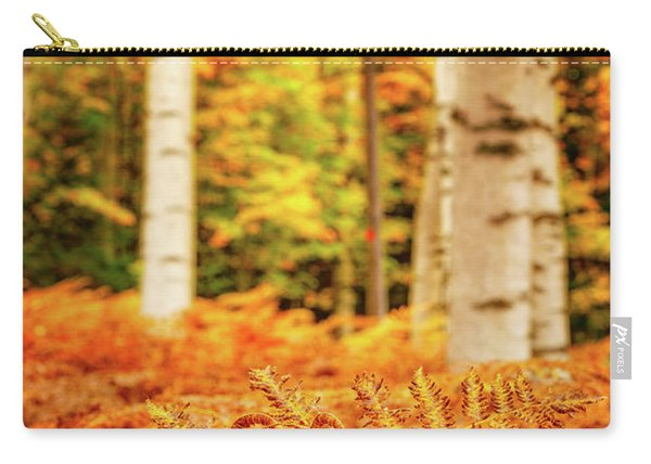 Carry-all Pouch featuring the photograph Golden Ferns In The Birch Glade by Jeff Sinon