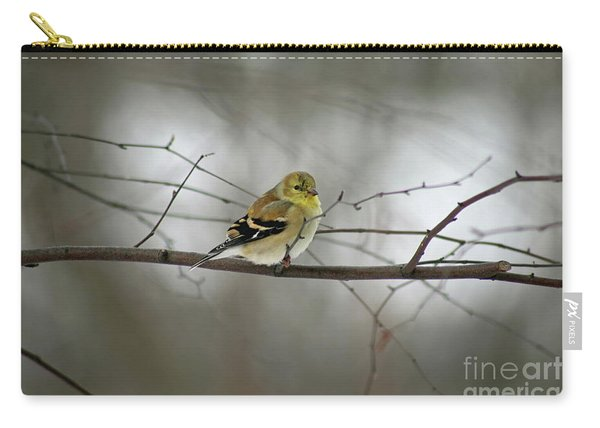 Goldfinch In Winter Looking At You Carry-all Pouch