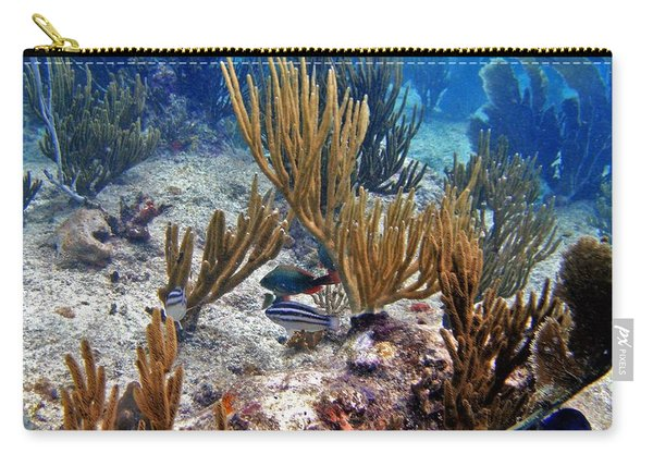 Gorgonian Parrotfish Carry-all Pouch