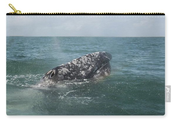 Gray Whale In Bahia Magdalena Carry-all Pouch