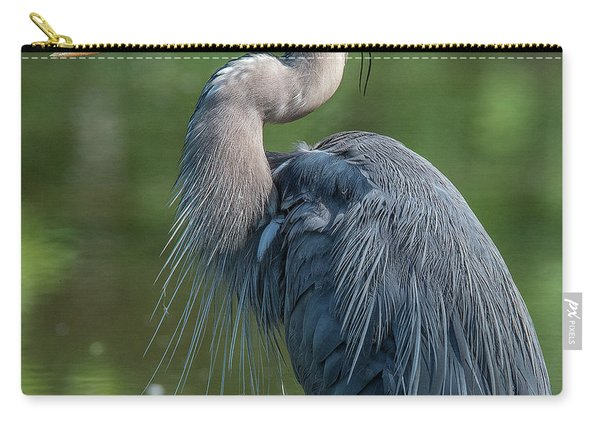 Great Blue Heron After Preening Dmsb0157 Carry-all Pouch