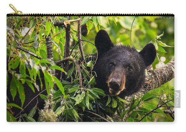 Great Smoky Mountains Bear - Black Bear Carry-all Pouch