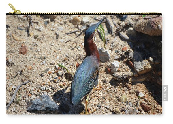 Green Heron Strut Carry-all Pouch