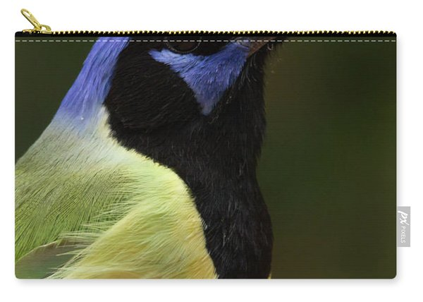 Green Jay Portrait Carry-all Pouch