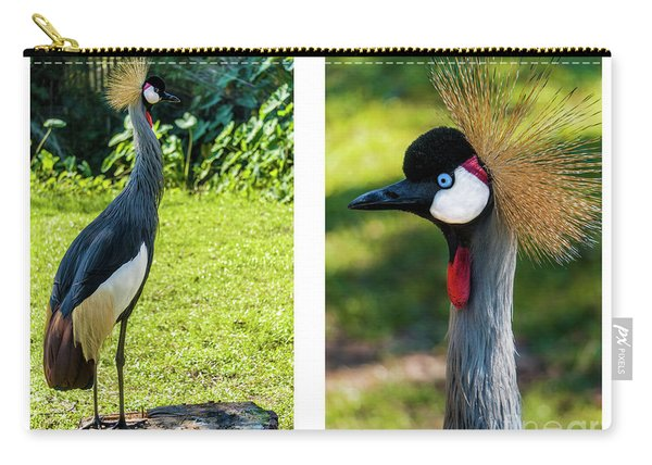 Grey Crowned Crane Gulf Shores Al Collage 10 Diptych Carry-all Pouch