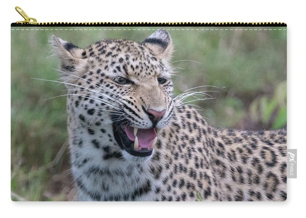 Grimacing Leopard Carry-all Pouch