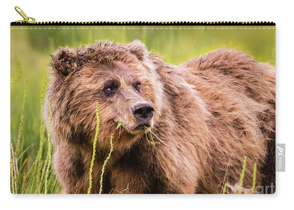 Grizzly In Lake Clark National Park, Alaska Carry-all Pouch