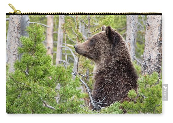 Grizzly Profile Carry-all Pouch