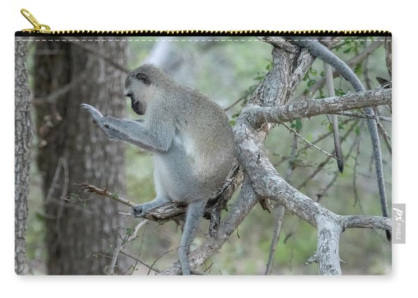 Grooming Or Reading Carry-all Pouch