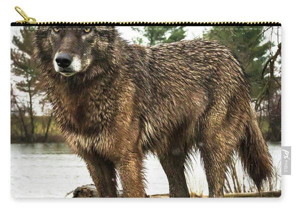 Handsome Niko Carry-all Pouch
