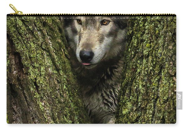Hangin In The Tree Carry-all Pouch