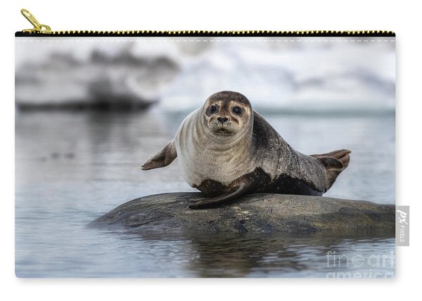 Harbour Seal On A Rock In Svalbard Carry-all Pouch