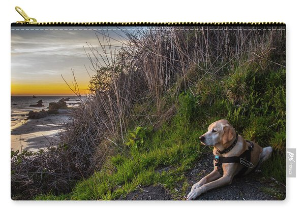 Harris Beach Sunset Carry-all Pouch