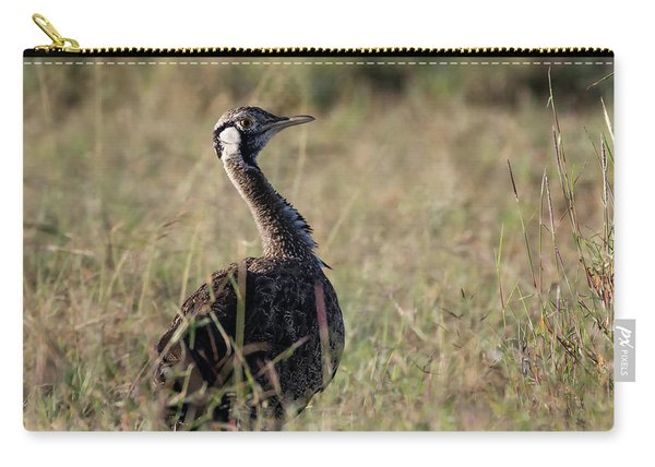 Black-bellied Bustard Carry-all Pouch