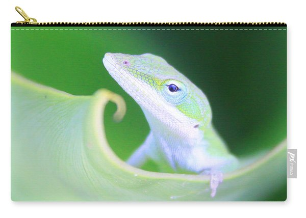 Hello, Anole. 2 Carry-all Pouch