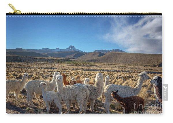 Herd Of Alpacas, Bolivia Carry-all Pouch