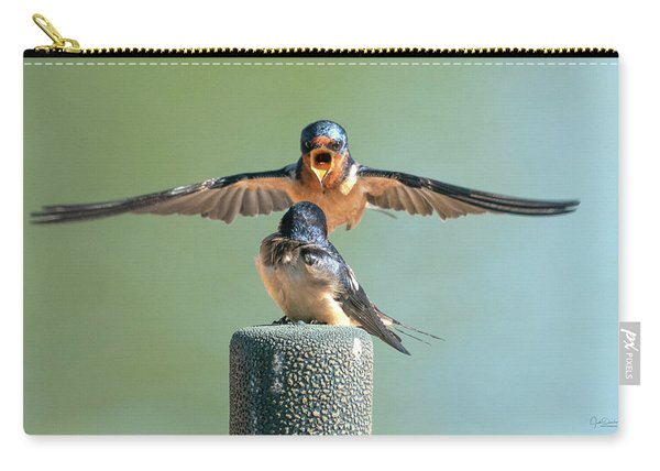 Hey, Babe, Let's Rock N Roll.  Barn Swallows Carry-all Pouch