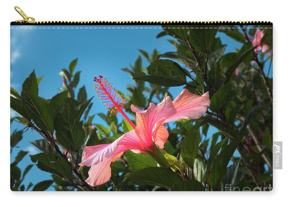 Hibiscus Splendour IIi Carry-all Pouch
