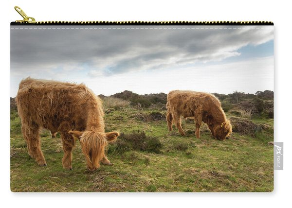 Highland Cattle Feeding At Baslow Edge Carry-all Pouch
