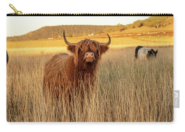 Carry-all Pouch featuring the photograph Highland Cows On The Farm by Rob D Imagery