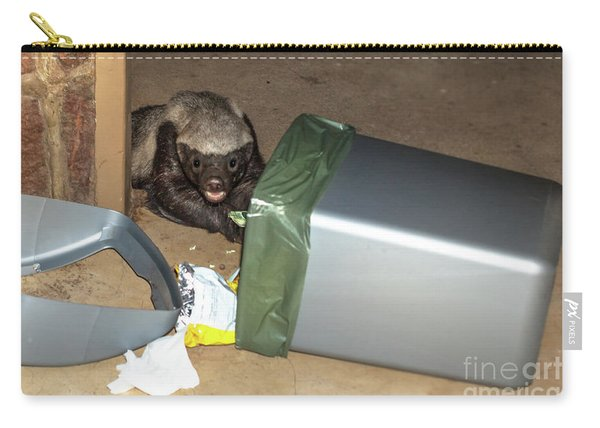Honey Badger Looking In Rubbish Bin Carry-all Pouch