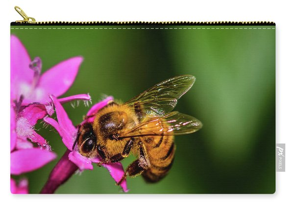 Carry-all Pouch featuring the photograph Honey Bee by Dheeraj Mutha