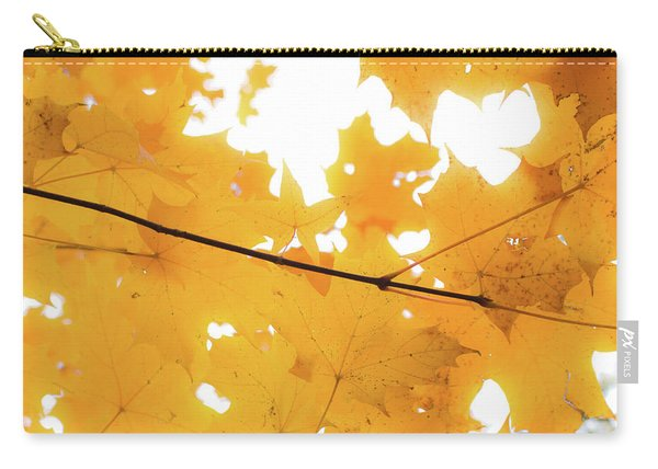 Honey Colored Happiness Carry-all Pouch