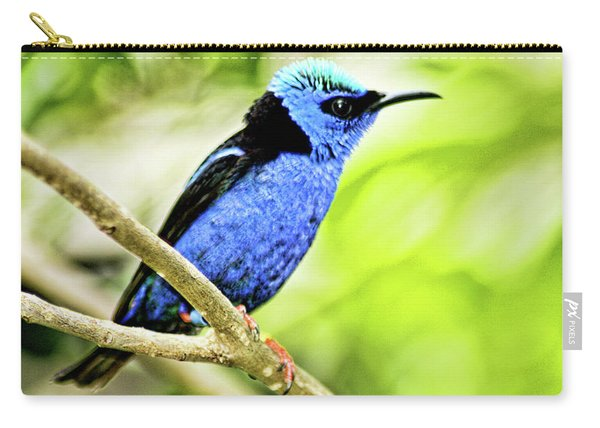 Red Legged Honeycreeper Carry-all Pouch