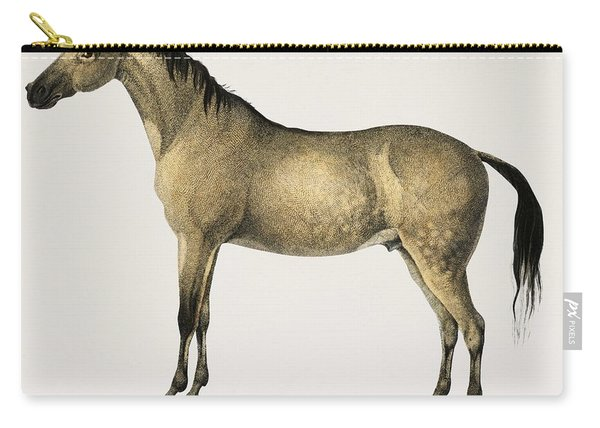 Horse  Equus Ferus Caballus Illustrated By Charles Dessalines D' Orbigny  1806-1876 2 Carry-all Pouch