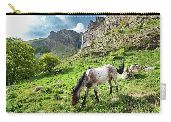 Horse On Balkan Mountain Carry-all Pouch