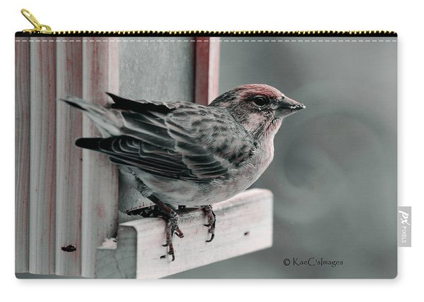 House Finch On Feeder Carry-all Pouch
