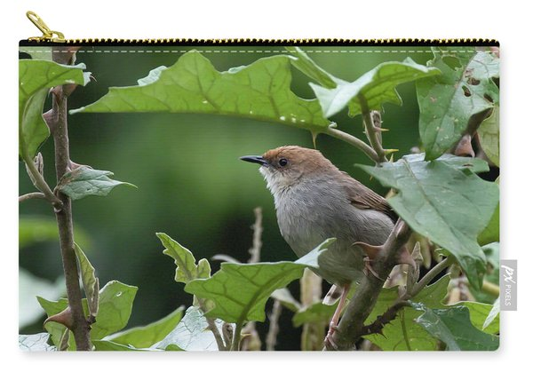 Hunter's Cisticola Carry-all Pouch