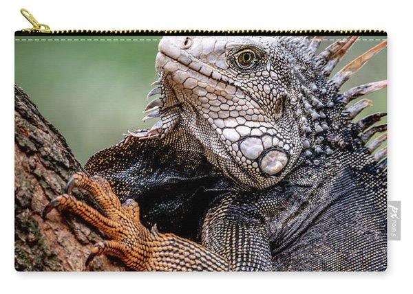 Iguana's Portrait Carry-all Pouch
