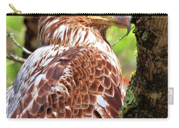 Immature Eagle Carry-all Pouch