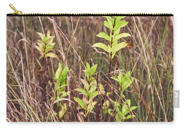 Carry-all Pouch featuring the photograph In Tall Grass by Whitney Goodey