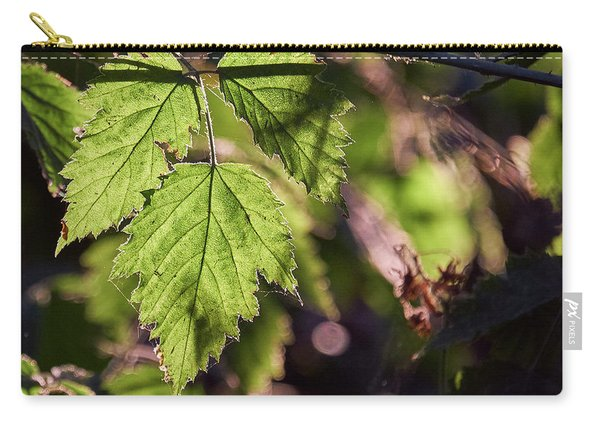 Carry-all Pouch featuring the photograph In Triplicate by Whitney Goodey