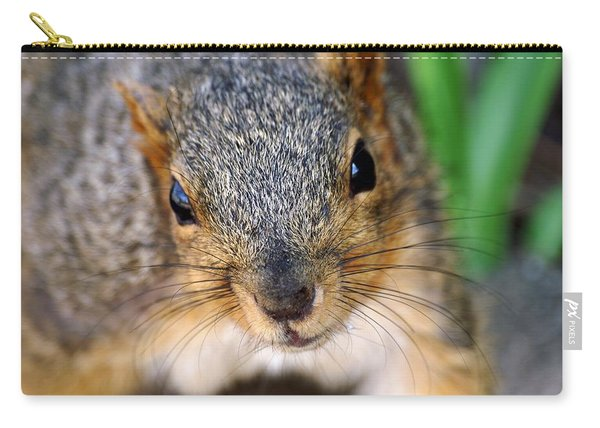 In Your Face Fox Squirrel Carry-all Pouch