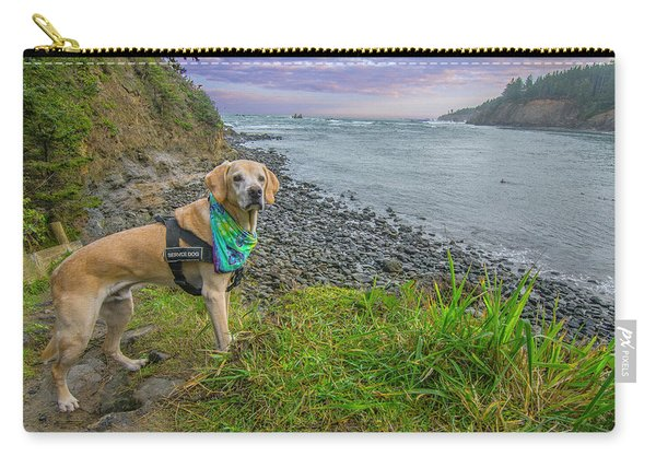 Jackson At Cape Arago Carry-all Pouch