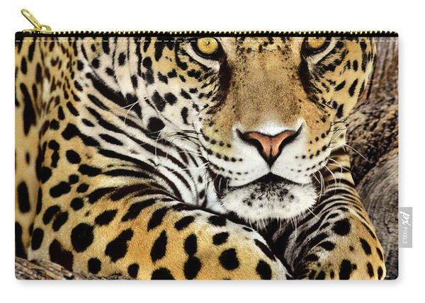 Jaguar Portrait Wildlife Rescue Carry-all Pouch