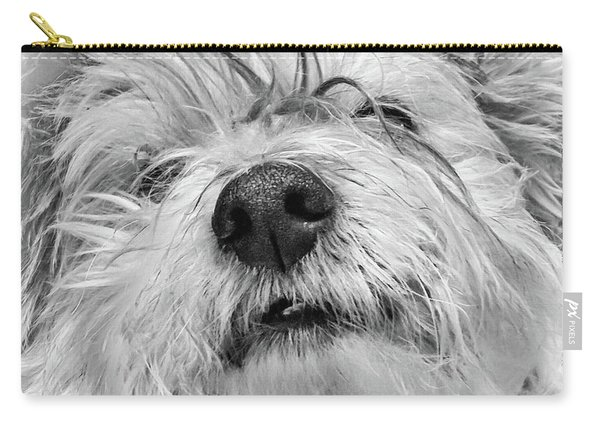 Coton De Tulear Dog Carry-all Pouch