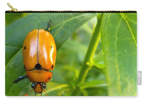 June Bug Carry-all Pouch