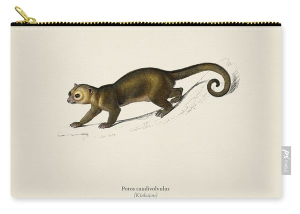Kinkajou  Potos Caudivolvulus  Illustrated By Charles Dessalines D' Orbigny  1806-1876  Carry-all Pouch